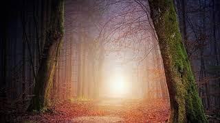 Jesus Sananda - Der Christus erwacht in dir